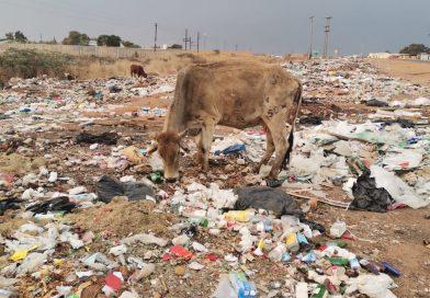 Elias Motsoaledi Local Municipality commits to waste management service