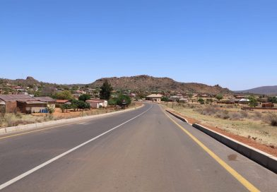 A man was allegedly assaulted in front of the Limpopo premier